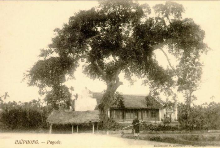 haiphong_pagode.JPG (56923 octets)
